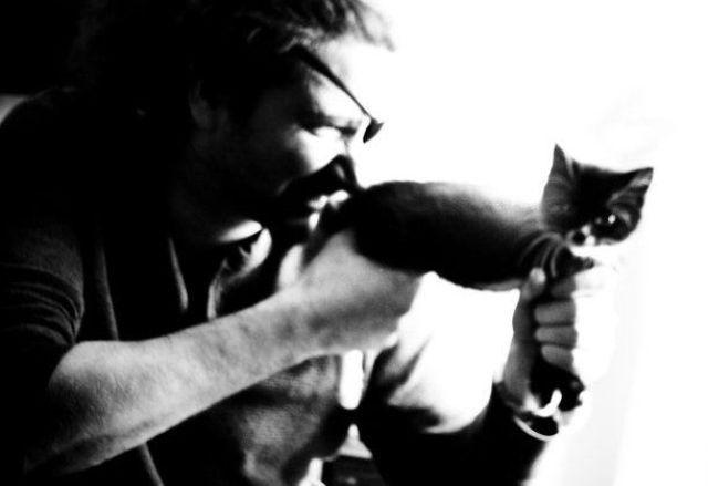 picture-cat01-042.jpg