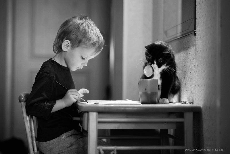 cat4-008.jpg
